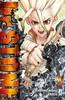 DRAGON  245 DR. STONE LIMITED EDITION    1